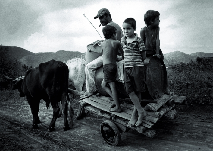 SUSAN S. BANK, Children on Oxen Cart, 2002-2007