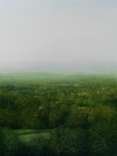 PETER BROOKE Celestial Forest 2015