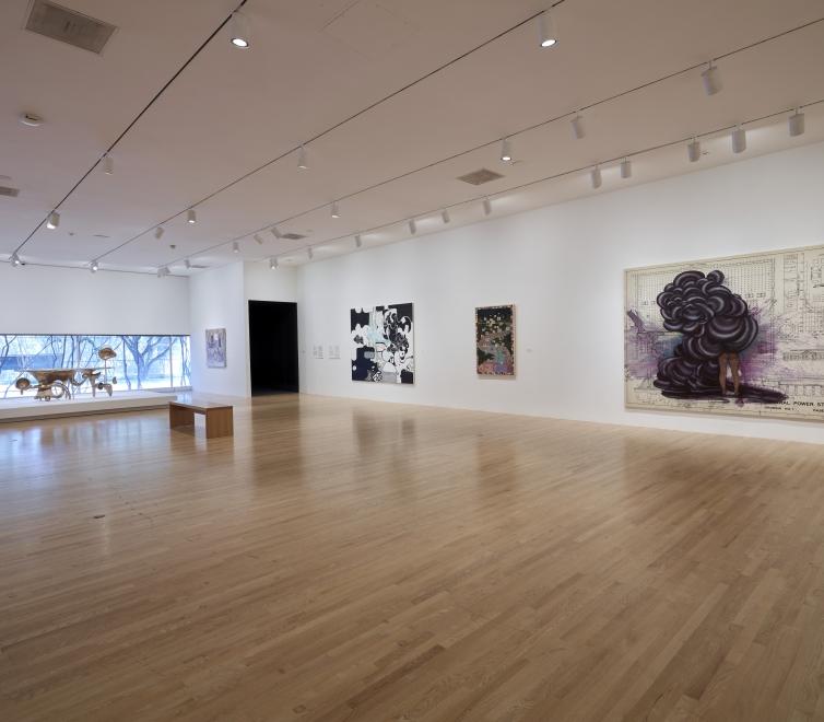 Firelei Báez at Dallas Museum of Art