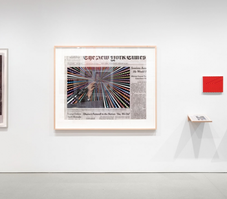 Fred Tomaselli at FLAG Art Foundation