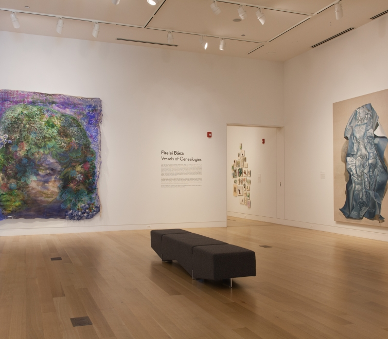 Firelei Baez at DePaul Art Museum