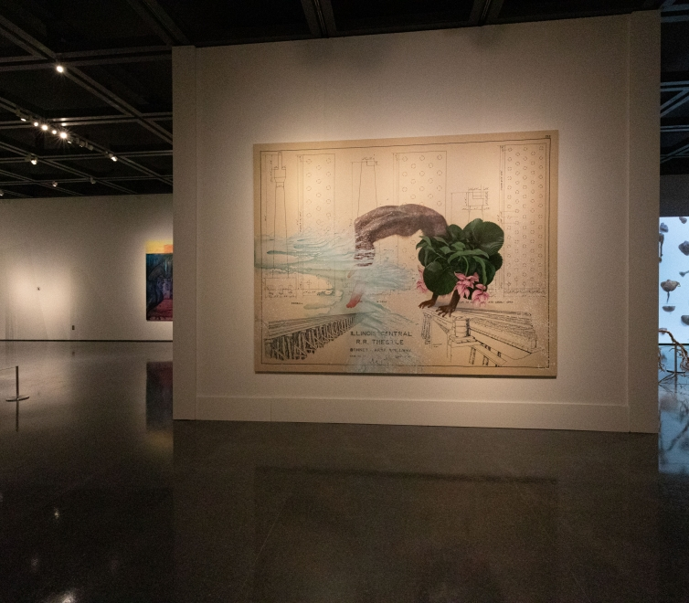 Firelei Báez at New Orleans Museum of Art