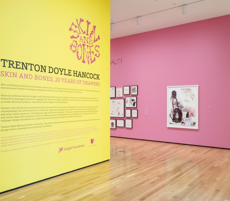 Trenton Doyle Hancock at the Akron Art Museum