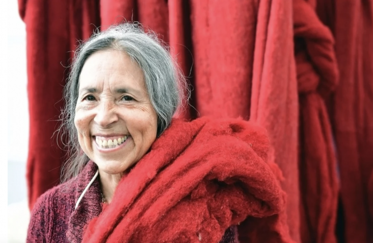 Her climate change art is finally being recognised: Cecilia Vicuña and how the world finally caught up with her