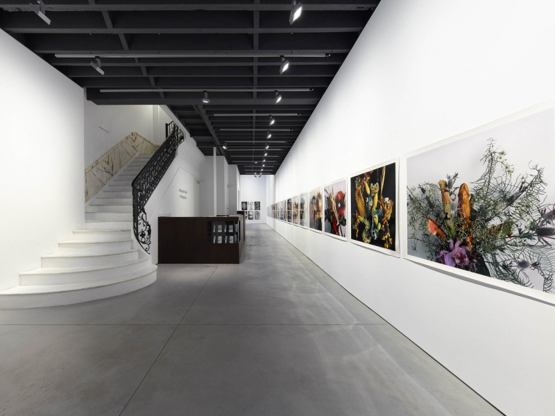 Anton Kern Gallery