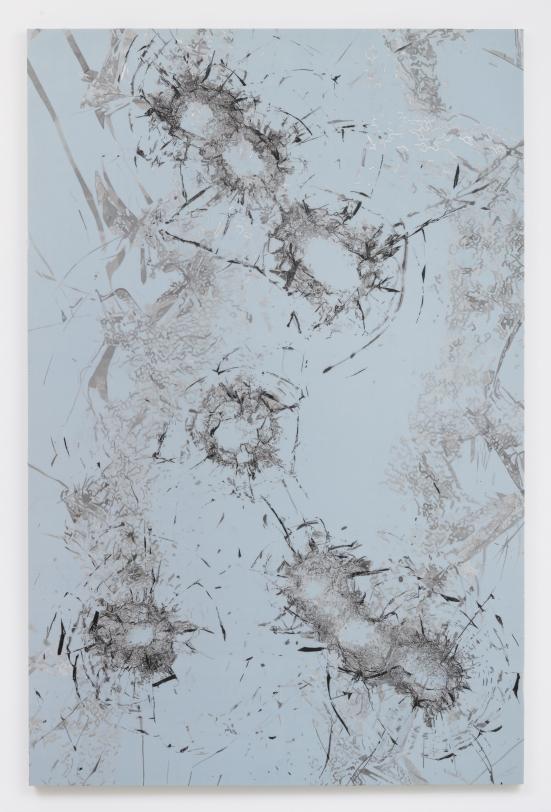 Zhao Zhao Constellation 7,2019