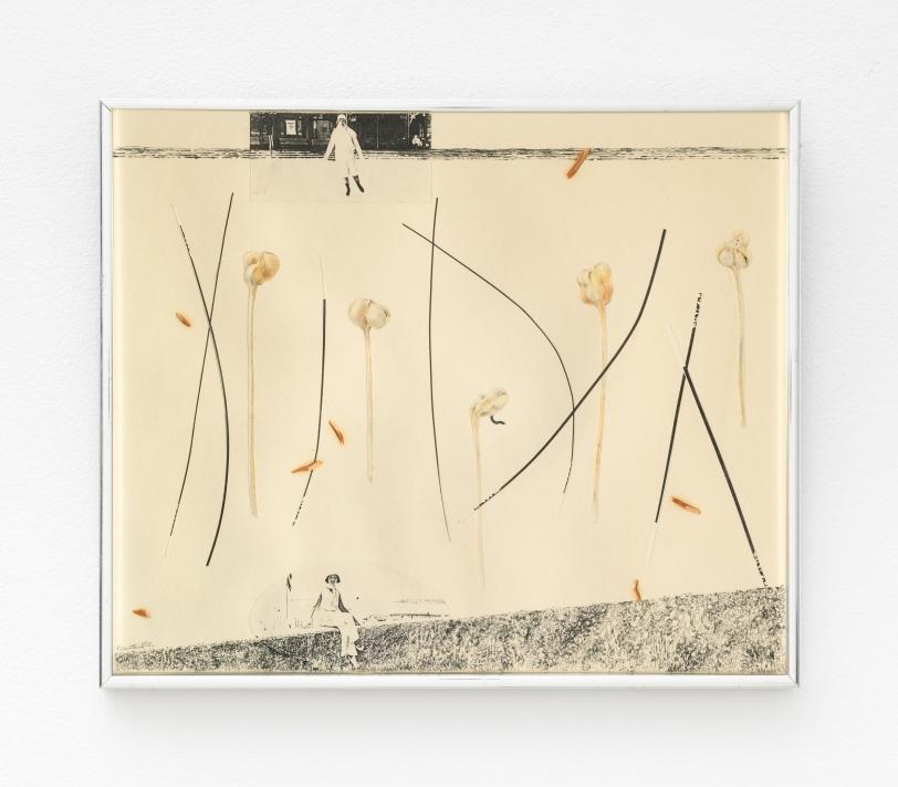 Rachel Rosenthal, All Seasons, 1975, Mixed Media Collage, 15.75 x 18.75 x 1 in, Reg# 10475