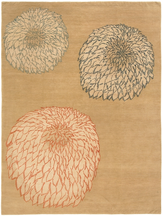 Chrysanthemum  Oak