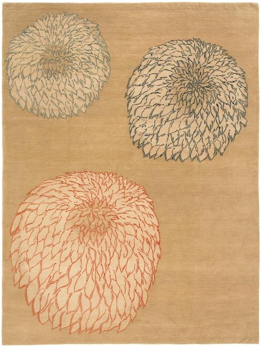 Chrysanthemum  Oak