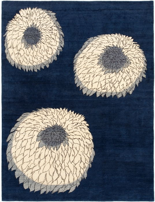 Chrysanthemum  Blue
