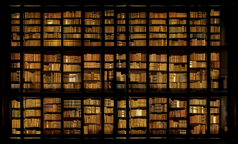 Ahmet Ertuğ - King's Library, London, 2008 Chromogenic print ; Bruce Silverstein Gallery