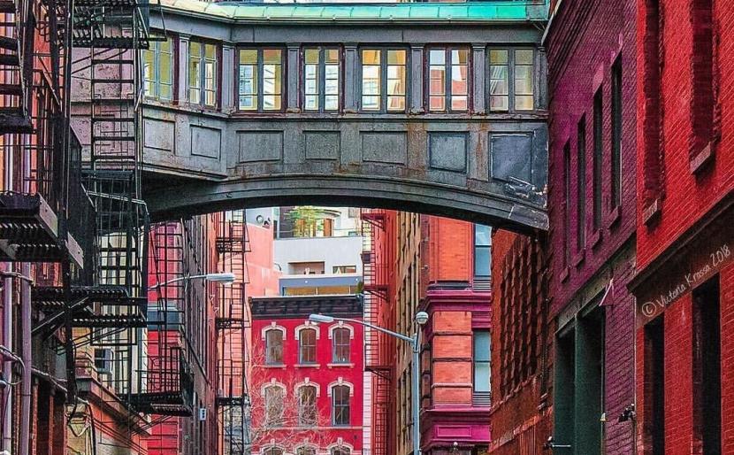 Inside The Tribeca Art Migration
