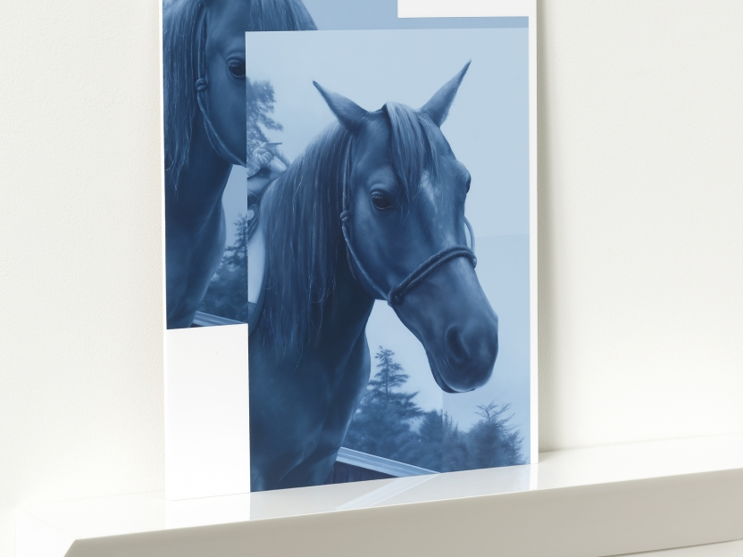 monochromatic blue painting of two portraits of horses