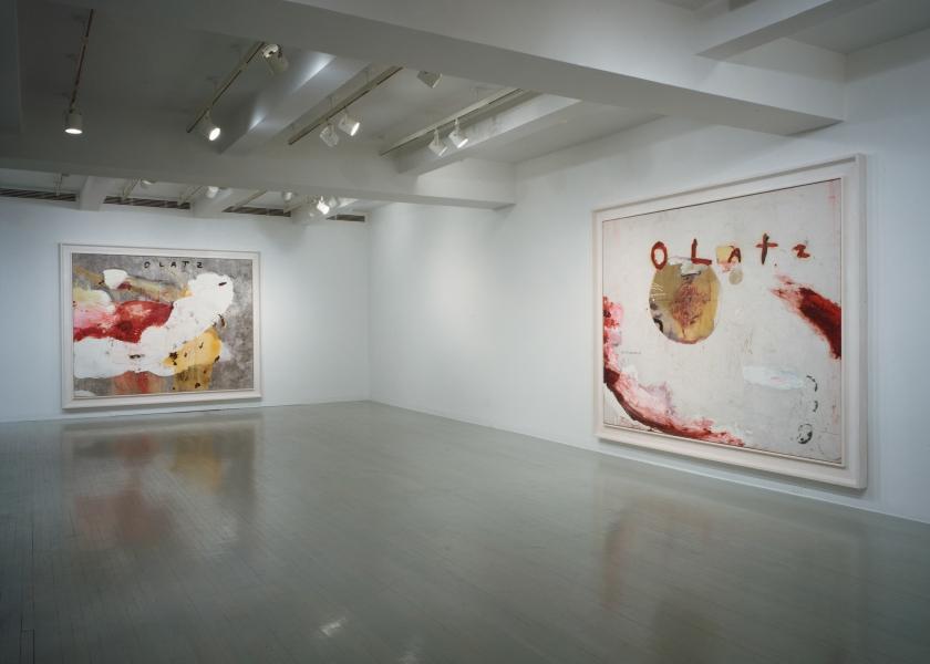 Olatz, Pace Gallery, New York, 1992