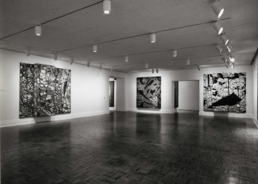 Museum of Fine Arts, Houston, 1987