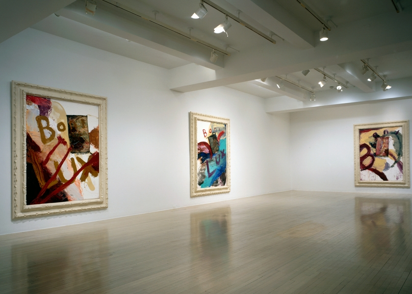 Boni Lux, Pace Gallery, New York, 1994