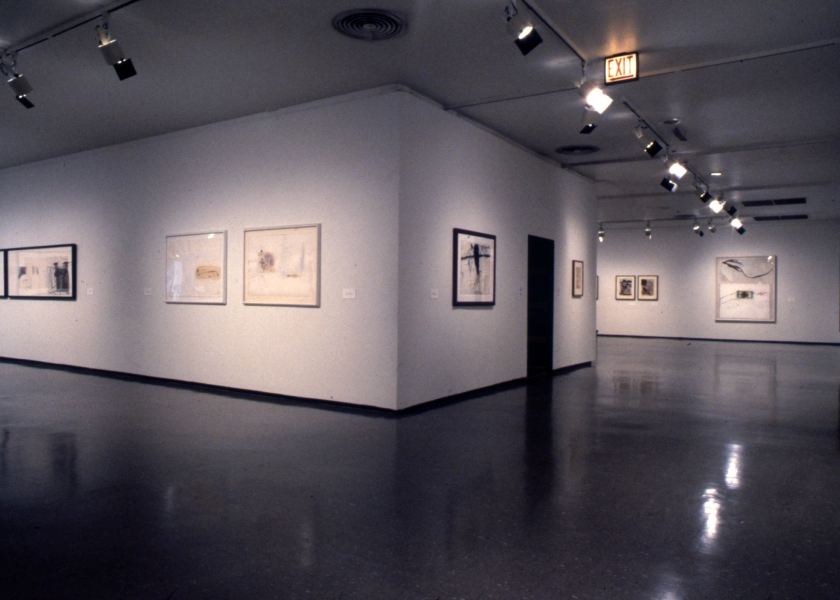 Museum of Contemporary Art, Chicago, 1989