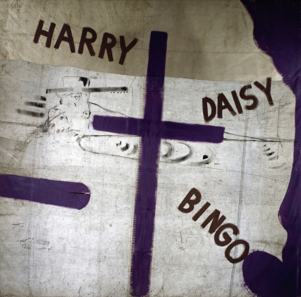 Harry Daisy and Bingo