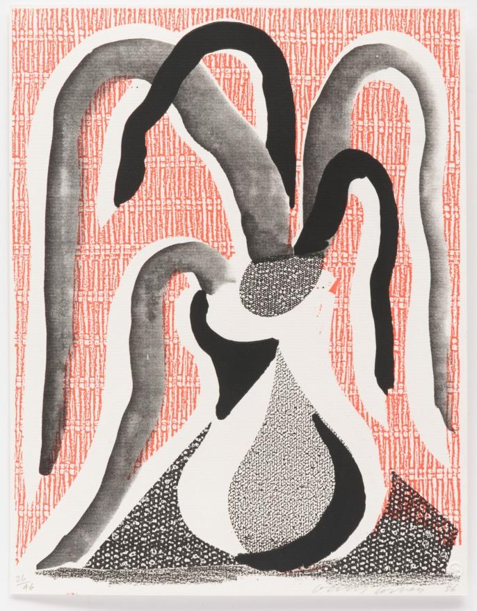 David Hockney, The Drooping Plant, June 1986, Homemade print