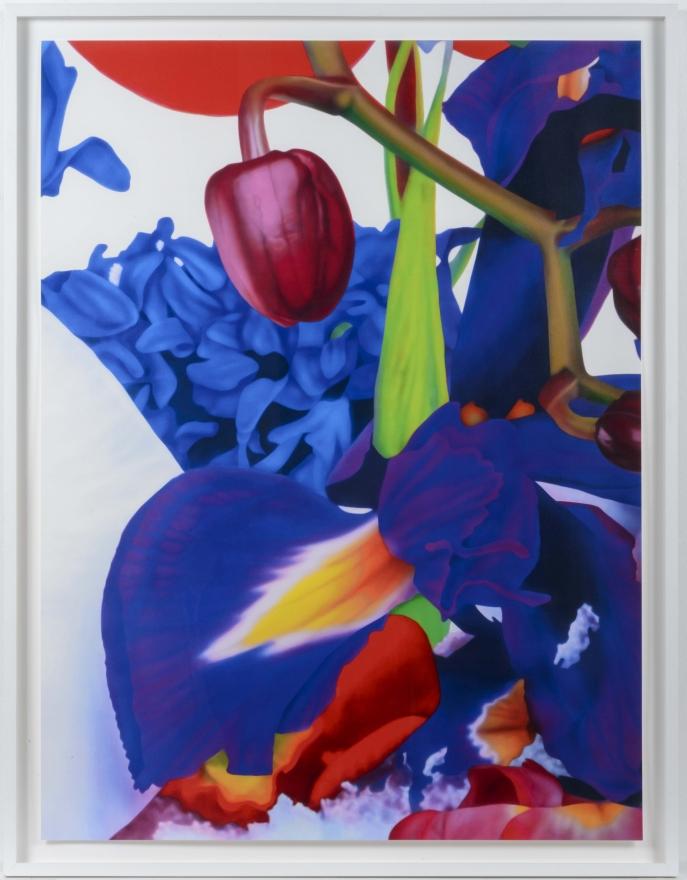 Marc Quinn, Portraits of Landscapes 8, Pigment print