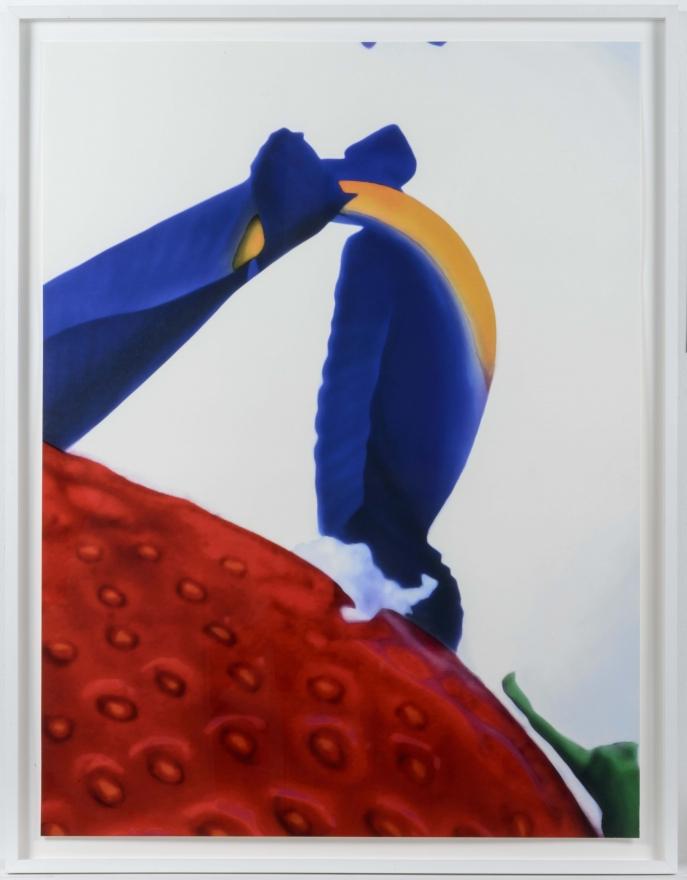 Marc Quinn, Portraits of Landscapes, Pigment print