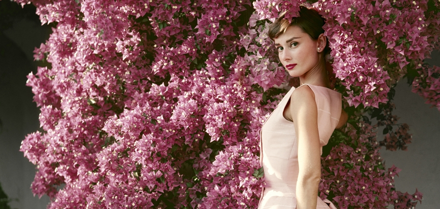 Frank Sinatra and Audrey Hepburn: A Life in Pictures