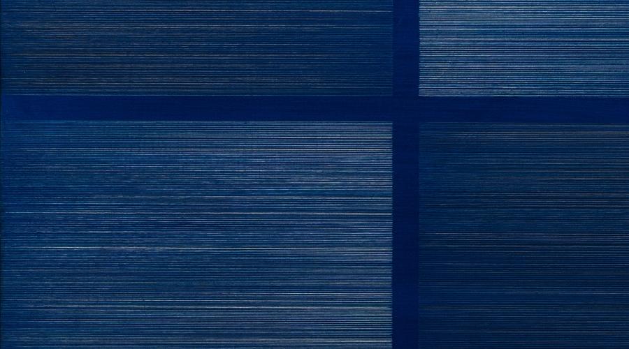 Susan Schwalb: Luminous Trace