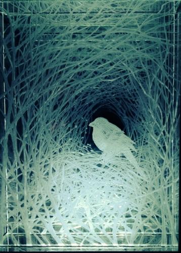 Nicolette Jelen, Nesting Bird, 2014, Engraving on Plexiglas and Lightbox, 11 x 8 x 5 inches