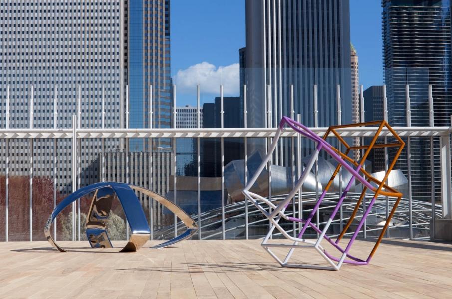 Liz Larner - Art Institute of Chicago