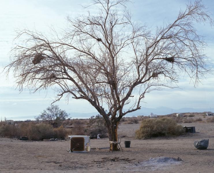 Doug Aitken - blow debris