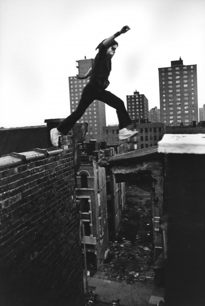 Stephen Shames - Bronx Boys