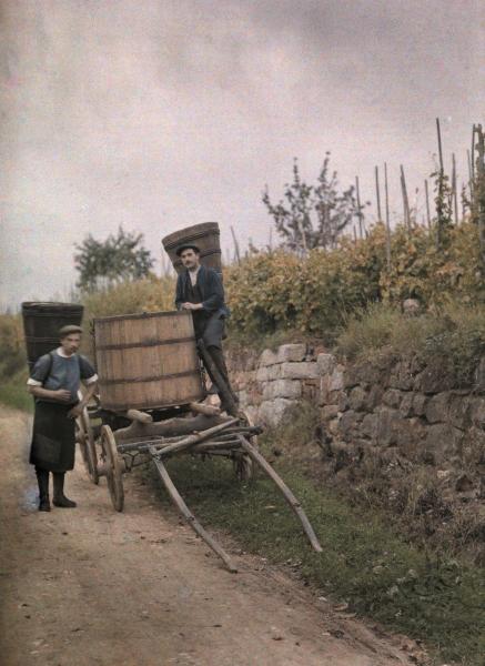 Jules Gervais-Courtellemont- Grape Harvest