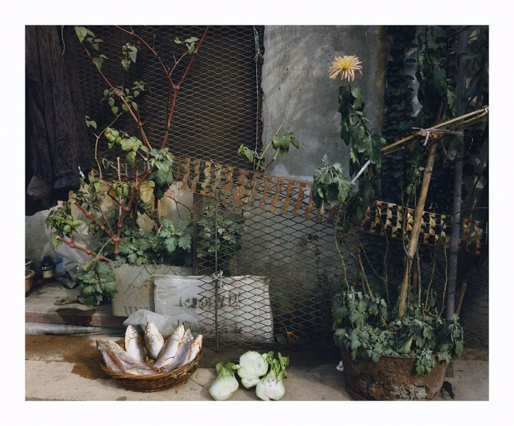 Leo Rubinfien- A Makeshift Kitchen, Shanghai