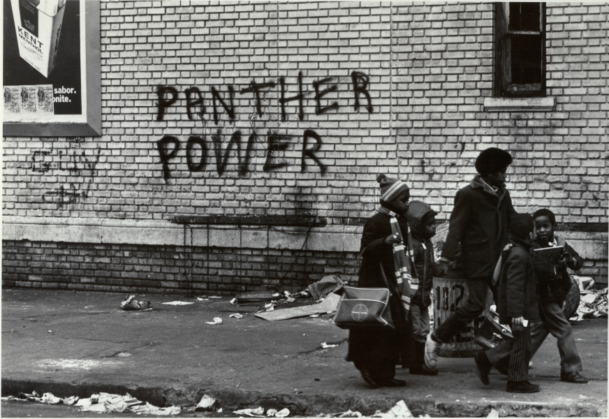 "Stephen Shames- ""Panther Power"""