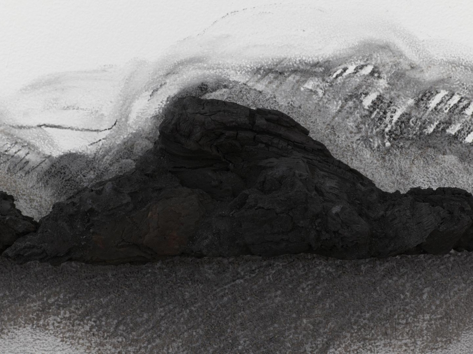 TERESITA FERNÁNDEZ Charred Landscape (America) (detail), 2017