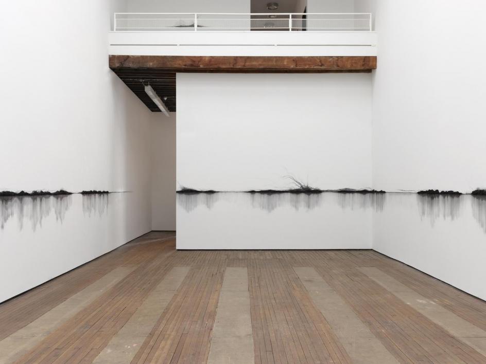 TERESITA FERNÁNDEZ Charred Landscape (America), 2017