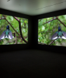 Janet Biggs Investigates Survival through an Innovative Two-Channel Video