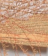 La palabra como poética material | Word as a material poetry