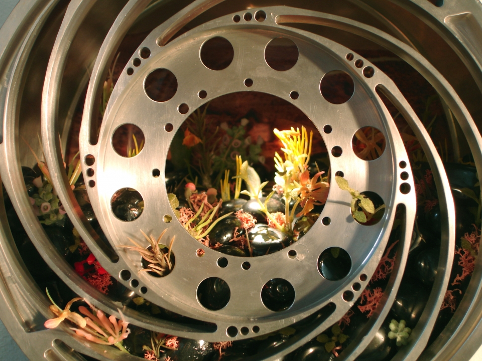 Wheel of Optimism