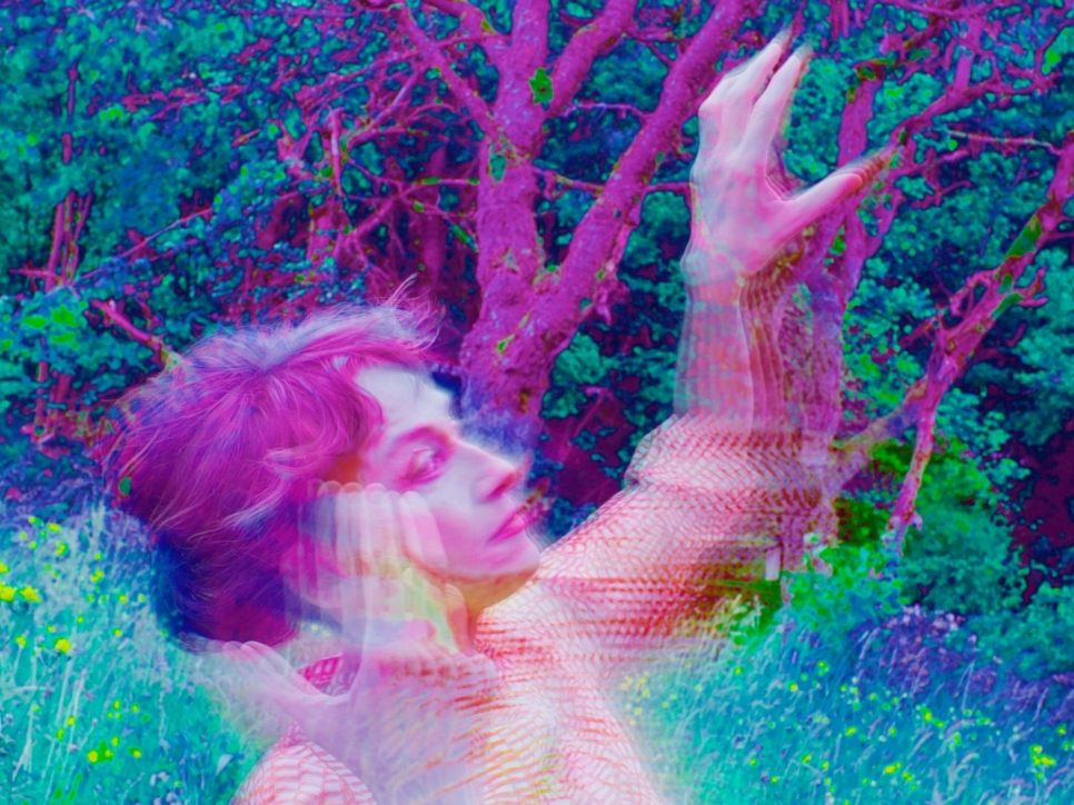 photo of Pipilotti Rist