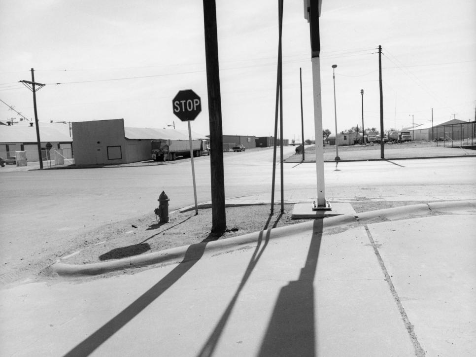 Lee Friedlander: Retrospective