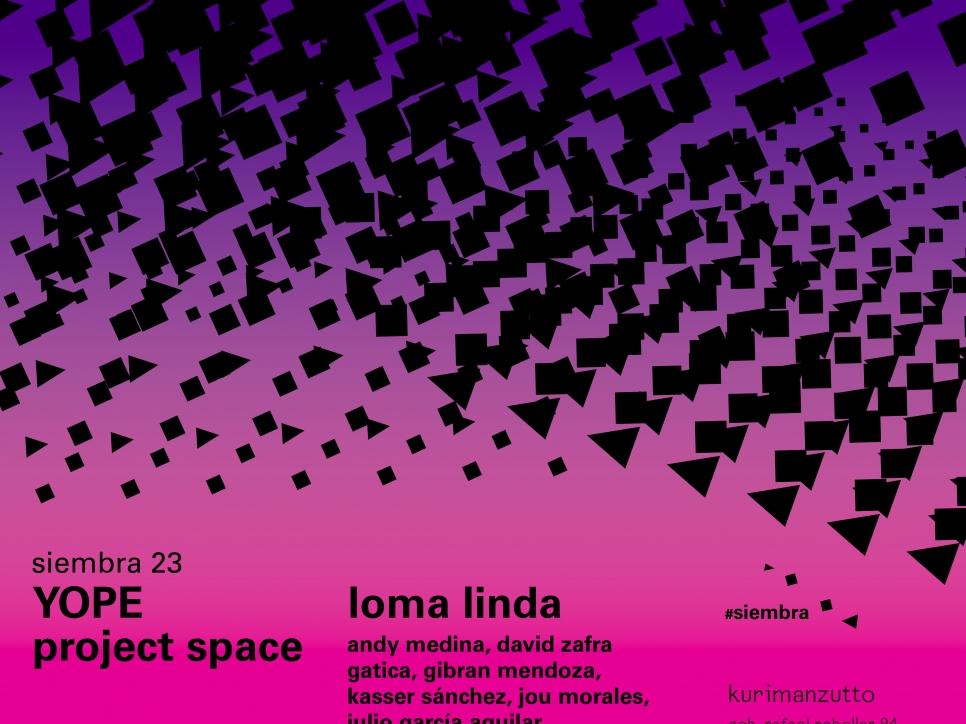 yope project space - loma bonita