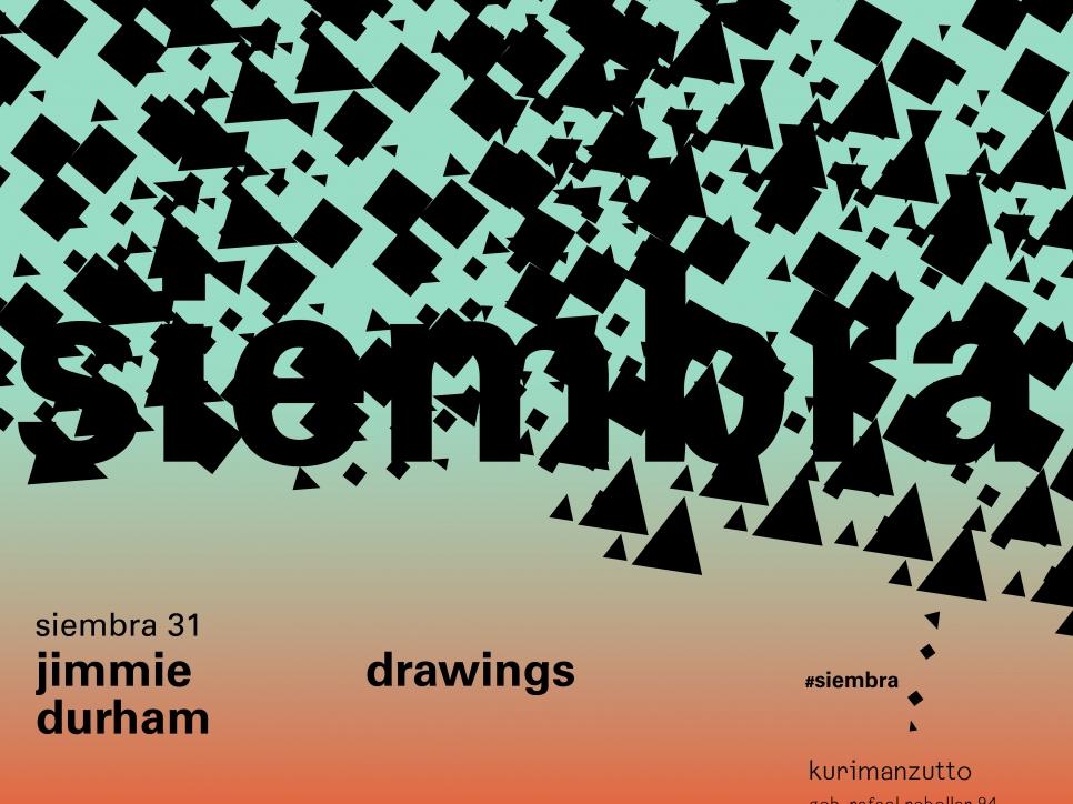 jimmie durham - drawings
