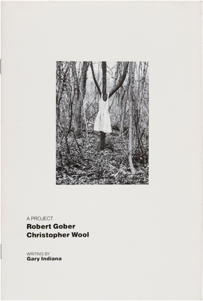Christopher Wool & Robert Gober: A Project