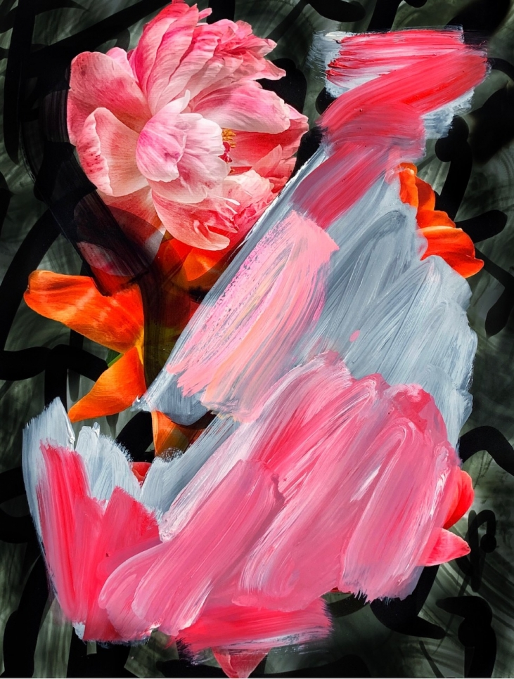 Photograph of brightly-coloured flowers with wide brushstrokes painted atop by Alexandra Penney