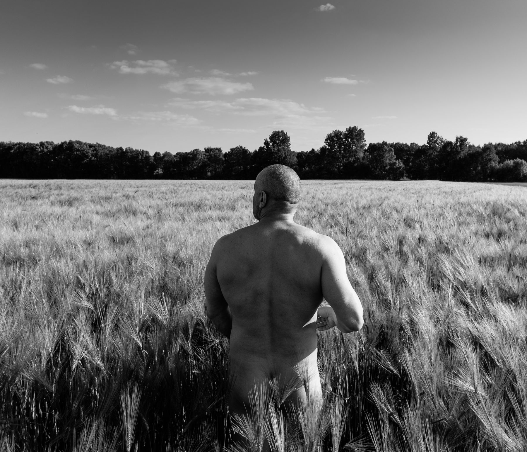 Giorgio in the Wheat | Epernay, France, 2014