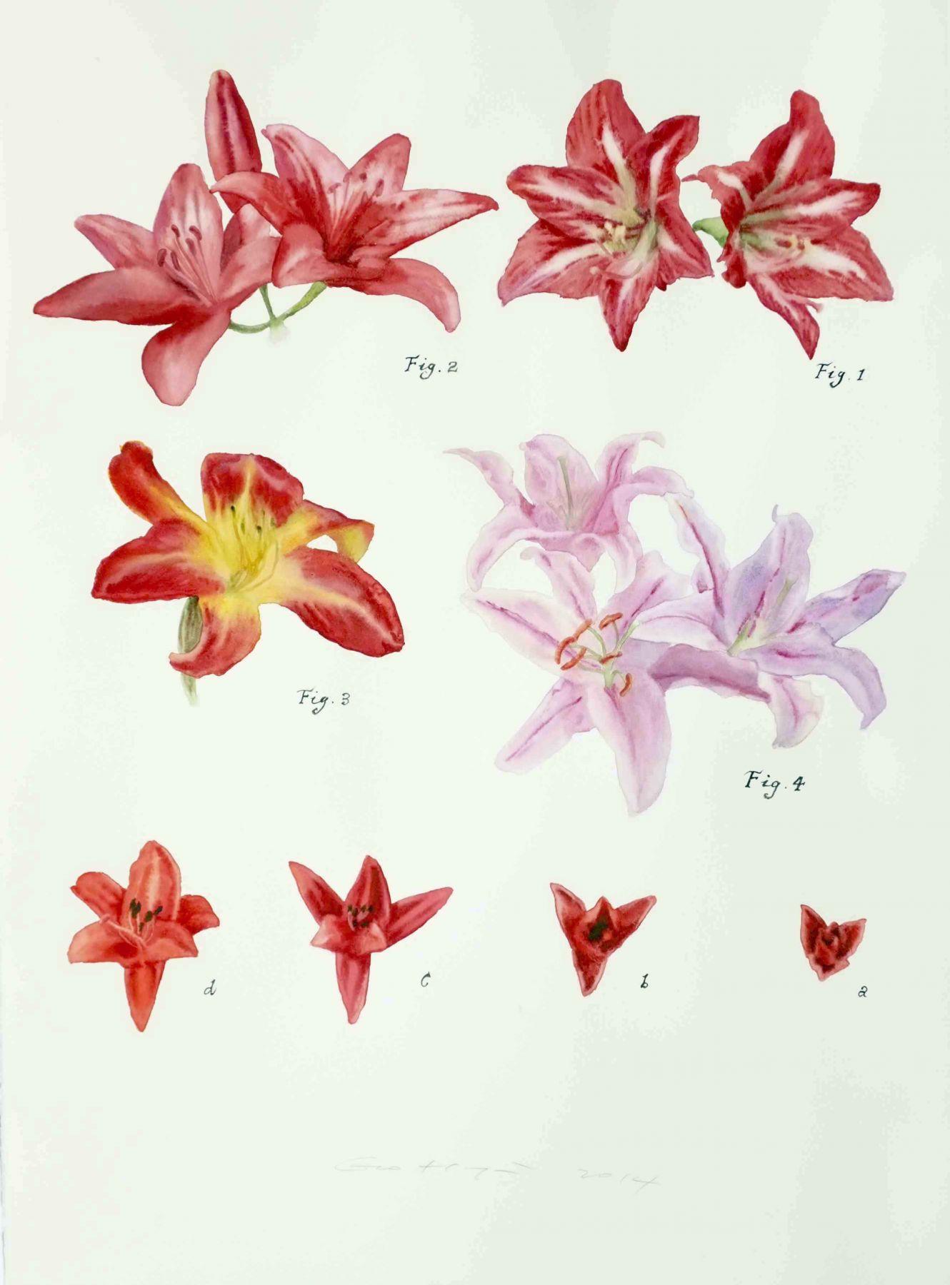 Guo Hongwei, Plant No. 15