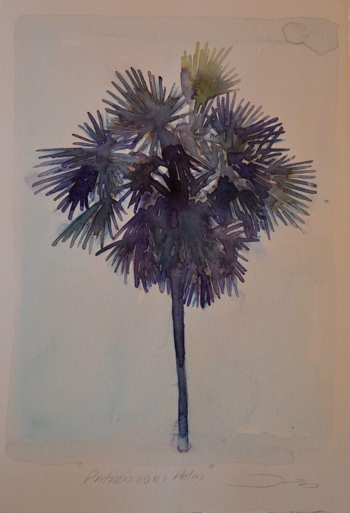 Patrón 006, Palm