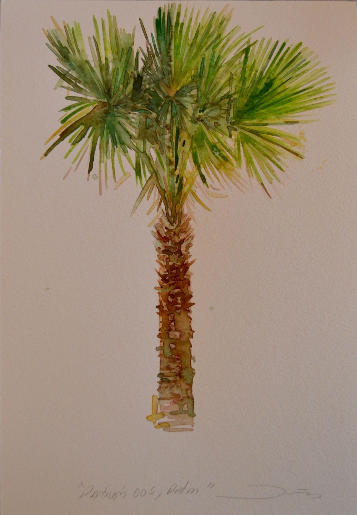 Patrón 005, Palm