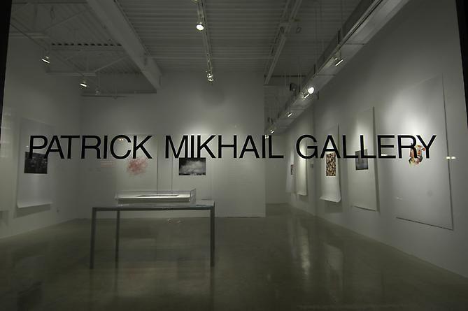 MICROCOSM | INSTALLATION VIEW | PATRICK MIKHAIL GALLERY | OTTAWA | 2009